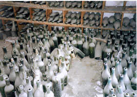 photo no. 20 bottles